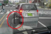 Another Live Dog Tied to Back of Car