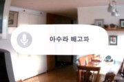 Google's Project Glass Concept Parodied in Korea