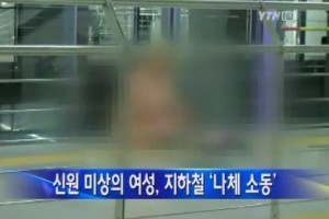 Naked Lady Hits the Subway