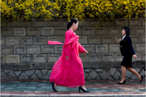 Eric Lafforgue's picture of a North Korean Woman in Traditional Dress