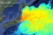 Korea-japan-radiation-fallout-fish